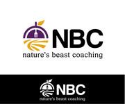 NBC  Logo - Entry #151