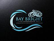 Bay Bright Environmental Logo - Entry #60