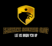 Blackhawk Securities Group Logo - Entry #109