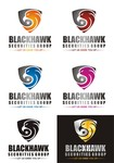Blackhawk Securities Group Logo - Entry #80