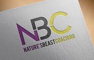 NBC  Logo - Entry #183