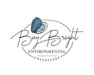 Bay Bright Environmental Logo - Entry #43