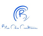Blue Chip Conditioning Logo - Entry #210