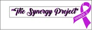 """The Synergy Project"" and place the word ""season three"" underneath in smaller front either as "" season 3"" or ""season three"" Logo - Entry #145"