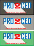 PRO2CEO Personal/Professional Development Company  Logo - Entry #110