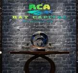 Ray Capital Advisors Logo - Entry #505