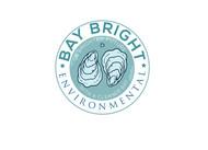 Bay Bright Environmental Logo - Entry #25