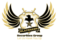 Blackhawk Securities Group Logo - Entry #112