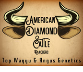 American Diamond Cattle Ranchers Logo - Entry #166
