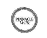 Pinnacle Wire Logo - Entry #42